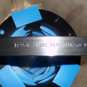 DIN 2576 Плоские Фланцы, S235JR, DN 250, PN 10