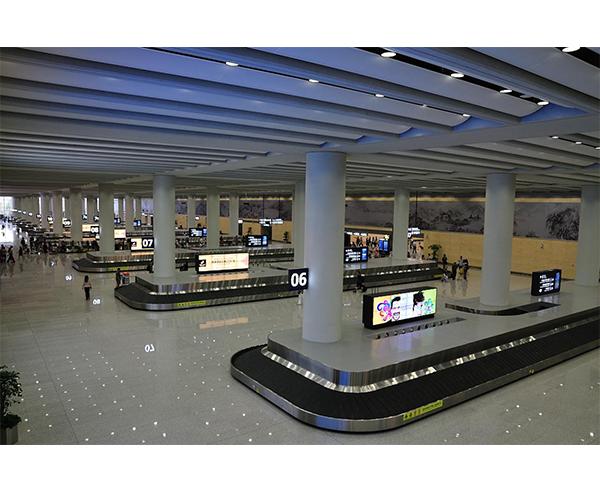 机场行李传送带专用轴承