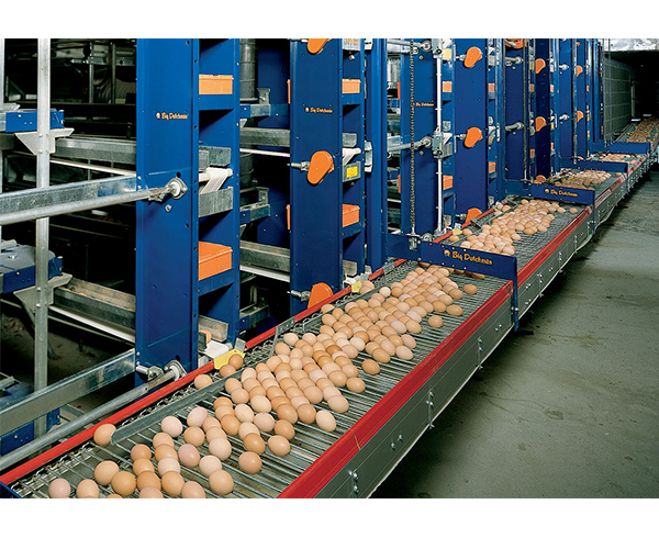 Bearing on Egg Collection System