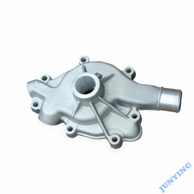 Aluminium Alloy Die Casting Pump Housing Part
