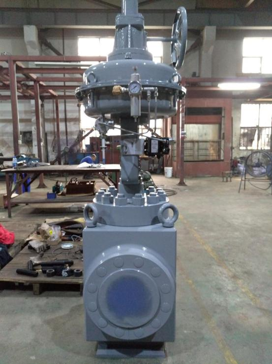 Dervos Delivered Two Control Valves to Russian Client and End User is Lukoil