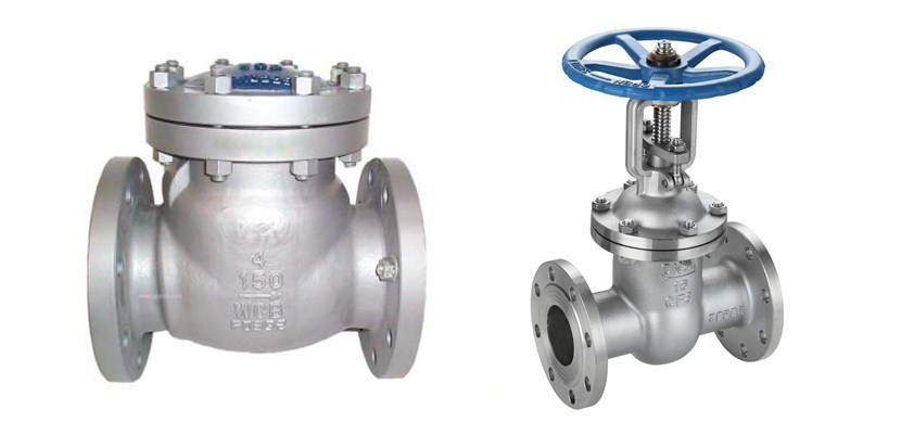 check valve and gate valve