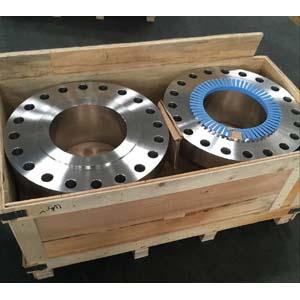 ASTM A182 Welding Neck Flange, SCH80, 10 Inch, 900LBS, RF
