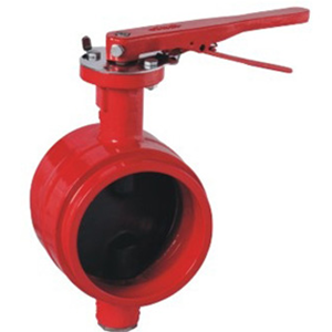 DI Centerline Butterfly Valve, Grooved, 2 Inch