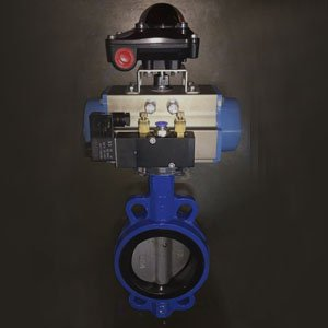 GGG40 Wafer Butterfly Valve, 4IN, CL150, Pneumatic
