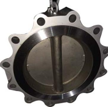 Dual Plate Lug Check Valve, ASTM A216, 12 Inch