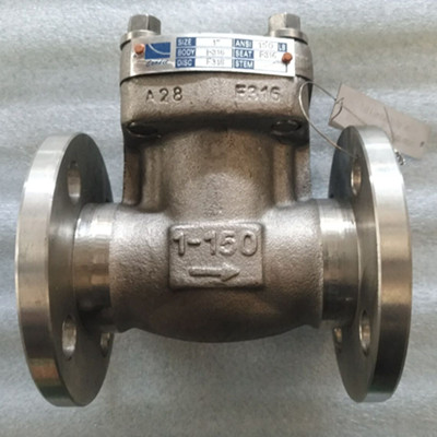 A182 F316 Swing Check Valve, PN20, DN25, Flanged Ends