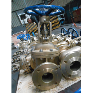 Alumium Bronze Gate Valve, ASTM B148 C95800, 3IN, 150LB, Flanged End
