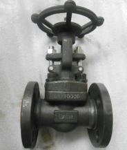 API 602 Gate Valve, ASTM A105, PN20, DN25, Flanged Ends