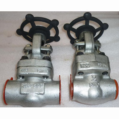 A182 F316L Forged Steel Gate Valve, DN15, PN30, Socked Weld