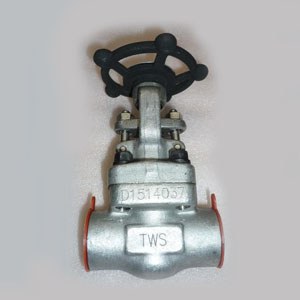 Forged Gate Valve, DN15, PN150, A182 F316L, SW Ends