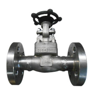 Gate Valve, A182 F304L, Flanged Ends, 3/4IN, CL600