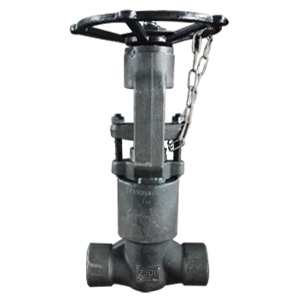 API 602 Globe Valve, ASME A182 F91, 2IN, CL2500, SW Ends