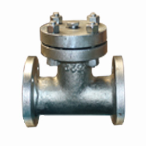 ASTM A105 T-Strainer, 2 Inch, Class 150 LB