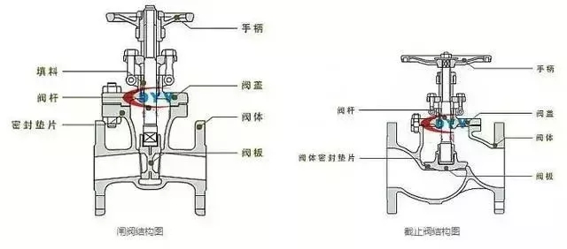 What is the difference between a globe valve and a gate valve?