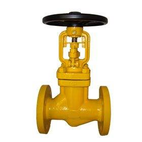 Features of Chlorine-Specific Valves