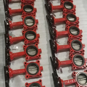 SS316L Butterfly Valve, ASTM A216 WCB, Flanged RF, EPDM Seat