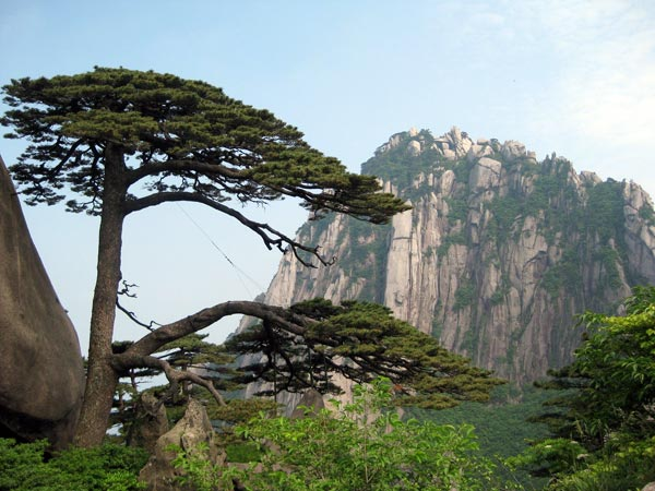 Three Days Bus Trip to Yellow Mountain in Anhui Province