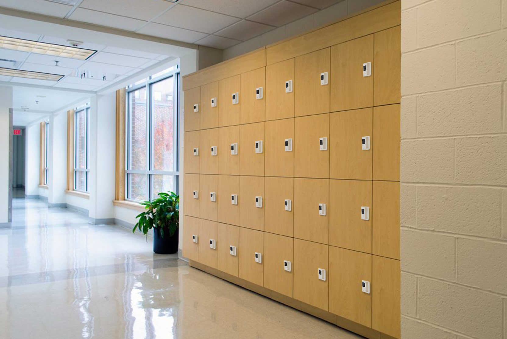 Why cabinets and lockers with electronic lock are so popular