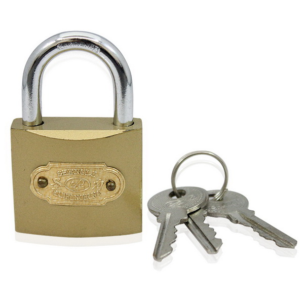 The Maintenance of Locks Appearance and Performance