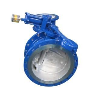 Structure of Extraction Check Valve