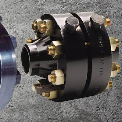 ASTM A105N Orifice Plate Flange ASME B16.47 300LB 30 Inch 65mm