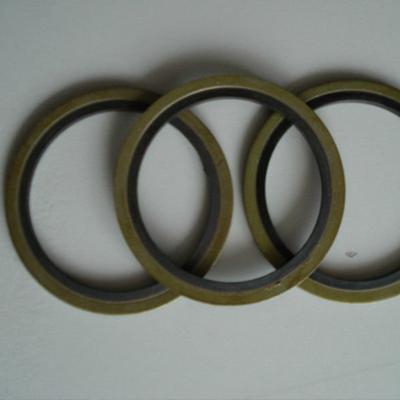 Duplex 2205 Spiral Wound Gasket 12 Inch THK 0.125 Inch 600#