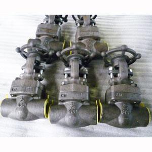 ГОСТ 9698-86 задвижка из кованой легированной стали, DN (Dy) 20 мм, 800 LB