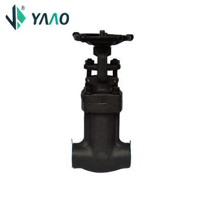 API 602 Bellow Seal Gate Valve, A105N, 3/4 Inch, 800LB