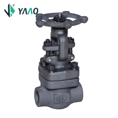 150LB-800LB Gate Valve, Bolted Bonnet, Full & Standard Port