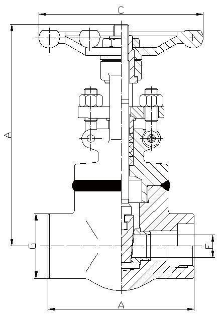 150LB-800LB Gate Valve, Welded Bonnet, Full & Standard Port