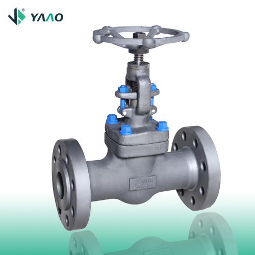 Flanged A105 FP Forged Globe Valve 1/2-4 Inch 150-2500 LB