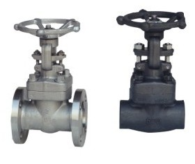 Common Types of Forged Steel valves