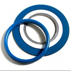 ANSI B16.20 Gasket, Soft Iron, PTFE Xylan Coated