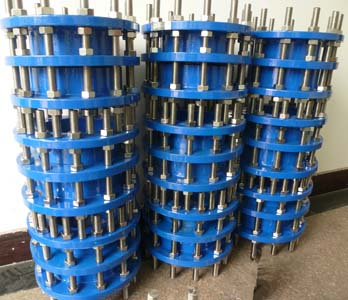 Ductile Iron Dismantling Joint, CS Flange, SS304 Bolts & Nuts
