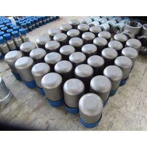 ASTM A105 Plug Head Bull, SCH 80, 2 Inch, NPT Ends