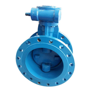 Double Eccentric Butterfly Valve, 6 Inch, 150 LB