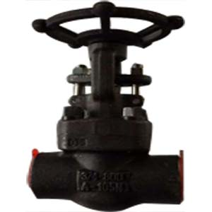 Solid Wedge Gate Valve, A105, 3/4IN, CL800, SW