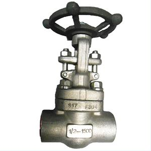 API 602 Gate Valve, A182 F304, 1/2IN, 900LB, SS304+STL Trim