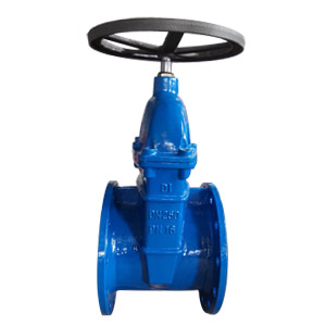 Flanged Gate Valve, PN16, DN250, Ductile Iron