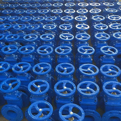 GGG40 Gate Valve, DIN3352 F4, 2 1/2IN, CL150, Blue Epoxy Powder