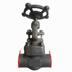 3/4 Inch Globe Valve, ASTM A182-F5 Body, MONEL Trim