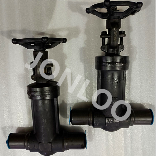 Bellows Seal Gate Valve with Welded Nipples 600LB