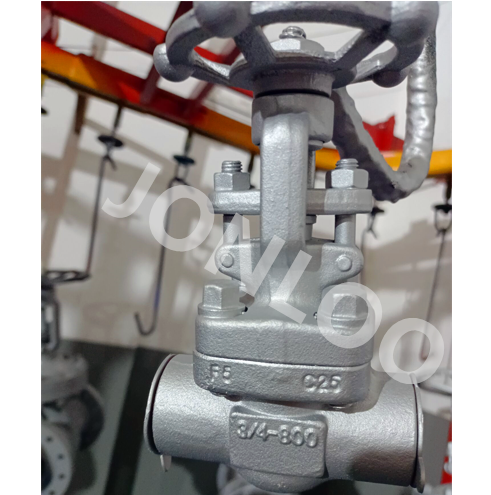 A182 F5 Forged Gate Valve 800LB 3/4INCH SW Ends