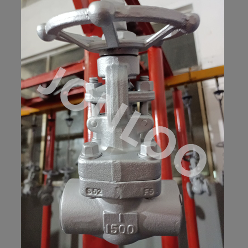 A182 F5 Forged Globe Valve 1inch 1500lb SW Ends