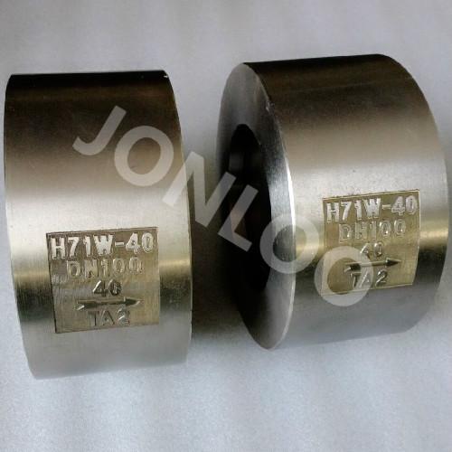 Wafer Check Valve Titanium Material DN100 PN40
