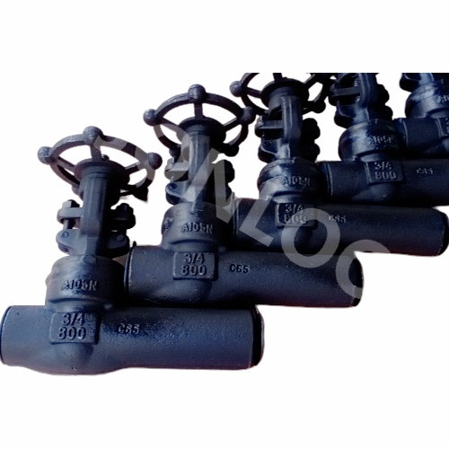 Forged Gate Valve With Extended Body Class 800 SW