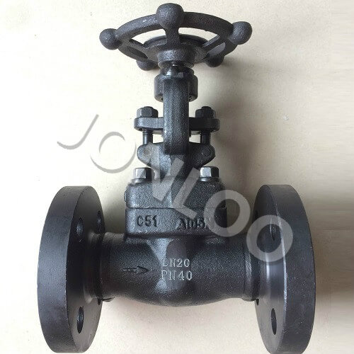 Forged Gate Valve DN 25 PN 40 A105N Flanged Ends