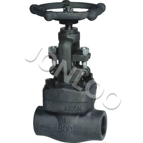 Forged Steel Globe Valve Socket Weld 800 LB A105N API602