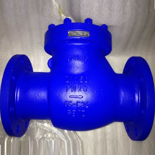 GS-C25 DIN Swing Check Valve DN150 PN25 Flanged Ends
